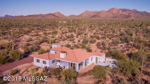 The house is surrounded by every kind cactus, along with palo verde and irenwood trees