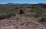 TBD N Desert Retreat Road, 62, Douglas, AZ 85607