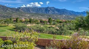 Your backyard view!