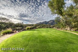 5855 N Kolb Road, 2101, Tucson, AZ 85750