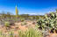 15435 E Tumbling L Ranch TO BE BUILT Place, Vail, AZ 85641