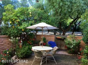 Gate provides access to common area. Note there is a lemon and ruby red grapefruit tree in yard.
