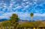 3315 N Manor Drive, Tucson, AZ 85750