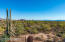 11362 N Moon Ranch Place, Marana, AZ 85658