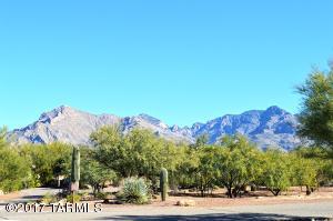 6859 N Placita Chula Vista N, Tucson, AZ 85704