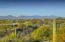 Outstanding mountain and Sonoran desert views