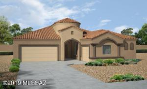 9665 N Texas Ebony Lane, Marana, AZ 85653