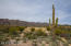 Backyard of property with views of the Catalina Mountains.