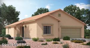 17285 S Nicholas Falls Drive, Vail, AZ 85641