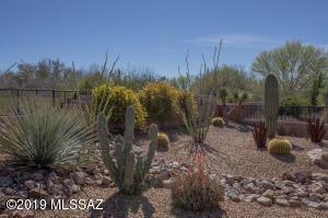 539 N Easter Lily Lane, Green Valley, AZ 85614