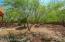 14004 E Via Del Abrigo, Vail, AZ 85641