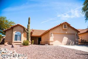 Beautiful mature saguaro cactus in front yard