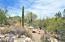 1302 E Moonridge Road, Tucson, AZ 85718