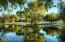 Main Home Pond