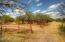 East Pasture Corrals