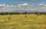 North Pastures