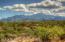 High Desert Foothill