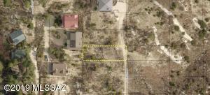 12789 N Ray Avenue, 1, Mt. Lemmon, AZ 85619