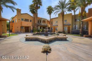 446 N Campbell Avenue, 2101, Tucson, AZ 85719