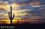 14880 E Diamond F Ranch Place, L-267, Vail, AZ 85641