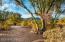 4906 W New Shadow Way, Marana, AZ 85658