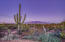 Property offers vast desert landscape, panoramic mountain views, & city lights.