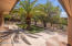 Paved patio & fenced in area. Lot extends back quite a bit (not fenced, natural desert). Plenty of room for a pool!!