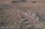 google earth snap shot