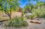 1 of the 4 natural landscaped Desert Gardens and your own Foothill! Sitting bench. Haven for wildlife