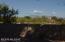 209 W Genematas Drive, Tucson, AZ 85704