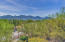 755 W Vistoso Highlands Drive, 201, Oro Valley, AZ 85755