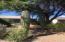 1760 W Sauvignon Drive, Tucson, AZ 85746