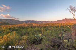 15435 E Tumbling L Ranch Place, 123, Vail, AZ 85641