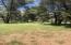 123 ABC Road, Patagonia, AZ 85624