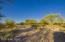 10915 E Pinal Vista, Tucson, AZ 85730