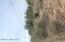 W Helmet Peak Road, 00007, Sahuarita, AZ 85629