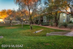 5751 N Kolb Road, 3204, Tucson, AZ 85750