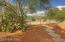 1715 E Waverly Street, Tucson, AZ 85719