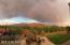Ahhhhh, Tucson VIEWS!