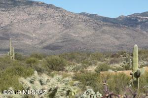 Close views of Saguaro National Park East from your property.