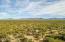 Beautiful Desert & Magnificent Mountains