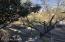 391 N Macnab Drive, Nogales, AZ 85621
