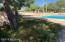 Liz Taylor swam in this pool!