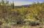 15390 E Tumbling W Ranch Place, 131, Vail, AZ 85641