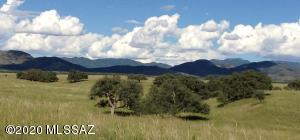 TBD Forest Road 4735, Patagonia, AZ 85624
