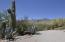 6540 N Mesa View Drive, Tucson, AZ 85718