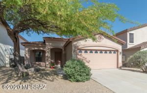 12852 N Yellow Orchid Drive, Oro Valley, AZ 85755