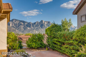 Beautiful Pusch Ridge Views!