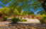Mature landscaping provides shade in the backyard
