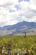 14896 E Diamond F Ranch Place, L-265, Vail, AZ 85641